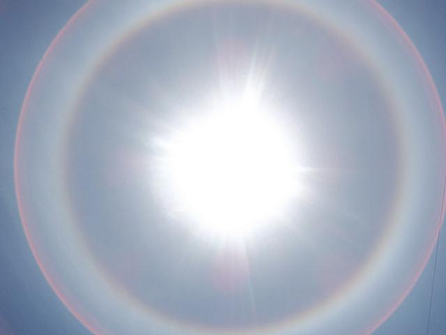 gratitude in a halo